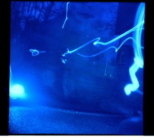fireflies.pos.5